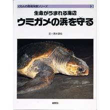 生命が生まれる海辺 ウミガメの浜を守る