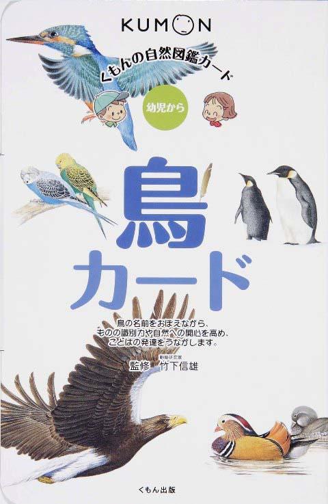 自然図鑑カード 鳥カード